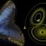 Ученые смоделировали путешествие во времени с помощью квантового компьютера