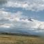 В Армении тестируют новый тип ударных беспилотников