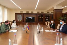 Yerevan slams Azerbaijan's barring of ICRC visit to Armenian officer