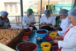 USAID unveils $2.65m in additional funding for Armenia agri sector