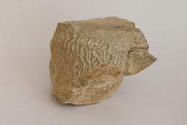 Մարտի 21-ին Գառնիում կցուցադրվի մարմարե «Ցլի գլուխը»