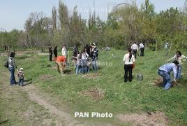 Озеленение Еревана выходит на новый качественный уровень
