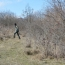 Поиски останков погибших в Карабахе продолжатся в Джракане