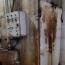 Ընկերության աշխատանքը կասեցվել է. Կաթնամթերքն արտադրել են ժանգոտ սարքերով, բորբոսապատ տարածքում