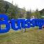 Buissup Global Forum. Մոտ 200 երիտասարդ կաշխատի սեփական բիզնես նախագծերի վրա՝ հնարավորություն ստանալով ներդրումներ ներգրավել