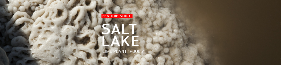 Salt Lake. Lime plant