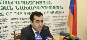 Press conference of Deputy Minister of Agriculture Robert Makaryan