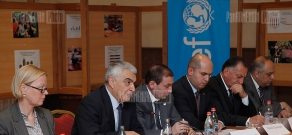 Parliamentary hearings on topic of the protection of disabled children's rights in Armenia
