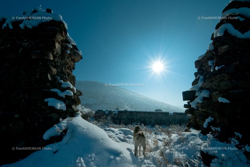 Հայկական բնապատկերներ. Հավուց Թառ, Խոսրովի անտառ