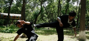 Demonstration and open training of Wing Tsun Kung martial art