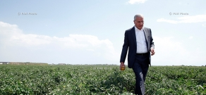 Minister of Agriculture Sergo Karapetyan visits Scientific Center for Farming