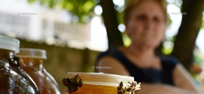 Honey festival in Shnogh village of Lori province