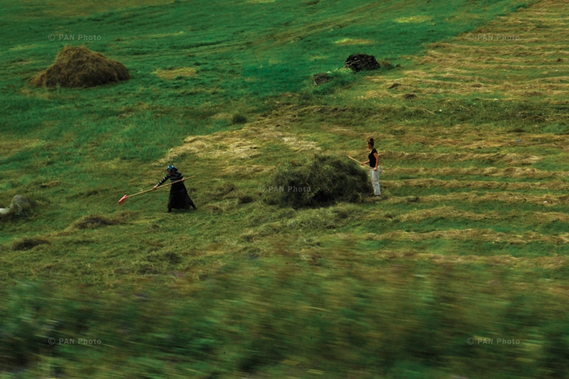 Women cutting grass, Kars, Western Armenia. It is common to see women performing tasks of hard labor in the fields, while the city's tea houses are filled with men
