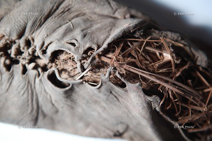 Աշխարհի ամենահին կաշվե կոշիկը՝ հայտնաբերված Արենի 1 քարանձավում
